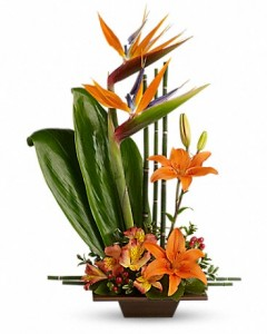 Caribbean Grace Fresh Arrangement