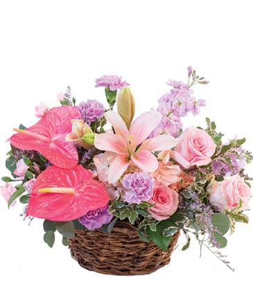 Caribbean Scents Floral Design