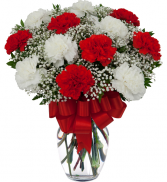 caring carnations vase arrangement