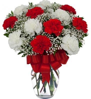Caring Carnations vase arrangement