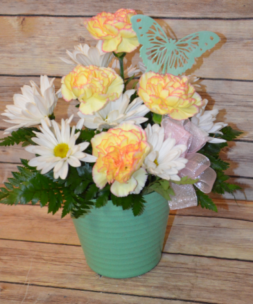 Carnation and Daisy Pot - Colors may vary