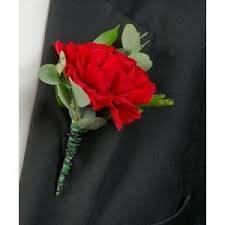 Carnation Bout