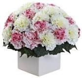 Carnation Boxery