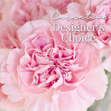 Carnation Designer's Choice Fresh Floral Arrangement