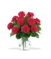 Carnation Explosion! Arrangement