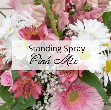 Carnation Standing Spray