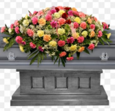Carnations Casket Cover