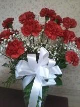 carnations D2013