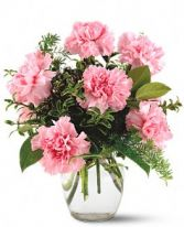 Carnations for you Arrangement