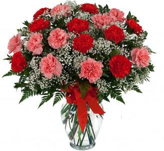 Carnations Galore All Around Posy