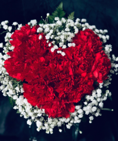 Carnations in a Heart Shape Valentine's Day