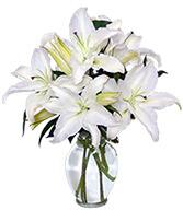 Casa Blanca Lilies Arrangement in West Hills, California | RAMBLING ROSE FLORIST