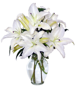 Casa Blanca Lilies Arrangement in East Templeton, MA | Valley Florist & Greenhouse