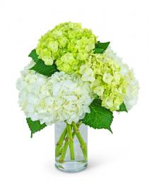 Cashmere and Mint Flower Arrangement
