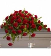 Casket Spray of Carnations