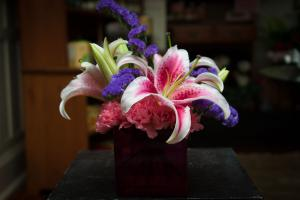 Casondra's Cube in Farmville, VA | Rochette's Florist