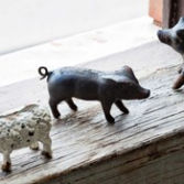 Cast Iron Pig Gifts