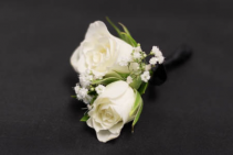 Catherine Boutonniere