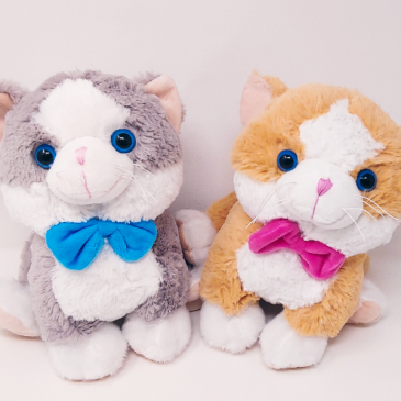 Cat's Meow Cuddly Plush Cat