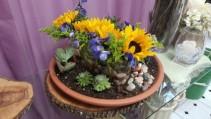 Catus Blooms