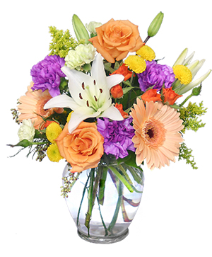 Celebrate! Bouquet in Fitchburg, MA | CAULEY'S FLORIST & GARDEN CENTER