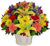 CELEBRATE FLOWER  BASKET