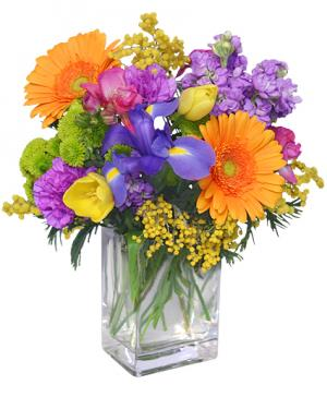 CELEBRATE THE DAY Fresh Flowers in Oak Ridge, TN | RAINBOW FLORIST