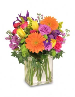 Celebrate Today! Bouquet in Shelbyville, IN | BLOOMING BALLOONS & BUDS