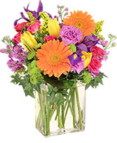 Celebrate Today! Bouquet in Milton, Massachusetts | MILTON FLOWER SHOP, INC