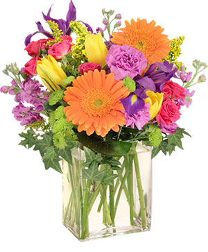 Celebrate Today! Bouquet in Windsor, ON | RAINBOW FLOWERS