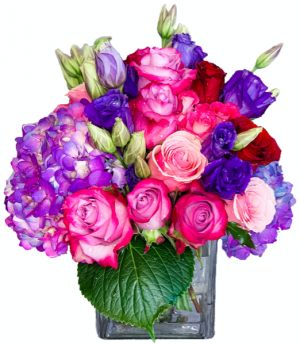 Celebration by DGM Flowers  in Fort Lauderdale, FL | Flowers Fort Lauderdale by DGM Flowers