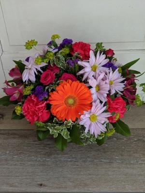 Celebration Fresh Arrangement in Middletown, IN | The Flower Girl