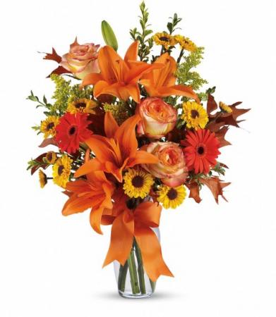Celebration of Autumn!!  TFL02-2B