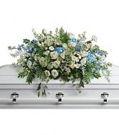 Celestial Fields  Funeral Casket Cover