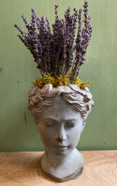 Cement Goddess Planter with Dried Lavender Arrangement