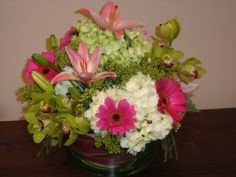 PINKS & GREENS Mixed Arrangement