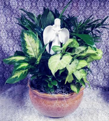 Ceramic Angel with Dove Dish Garden