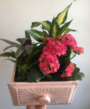 Ceramic Chest Mixed Planter  in Cambridge, ON | KELLY GREENS FLOWERS & GIFT SHOP
