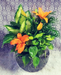 Ceramic Dishgarden with Lilies