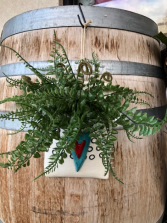 Ceramic & Fern wall hanger