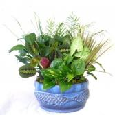 Ceramic Floral Arrangements in a 10 inch dish Ceramic Floral Or  Plant Container