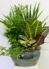Ceramic Garden Planter