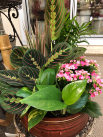 Ceramic planter garden