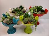 Ceramic Succulent Birdbath