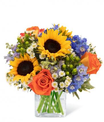 Cerulean Sunflower Garden