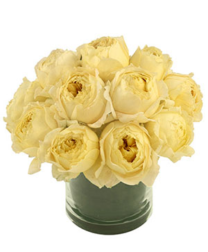 Champagne Roses Garden Roses Bouquet in Dallas, TX | Paula's Everyday Petals & More