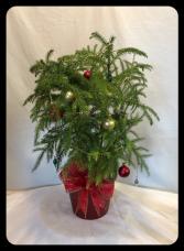Charlie's Christmas Tree