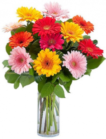 Charming Greberas Arrangements
