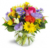 CHEERFUL ARRANGEMENT  BOWL ARRANGEMENT