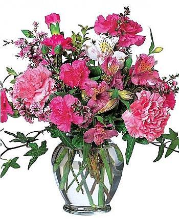 Cheerful Carnations  Vase Arrangement